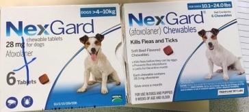 nexgard 1